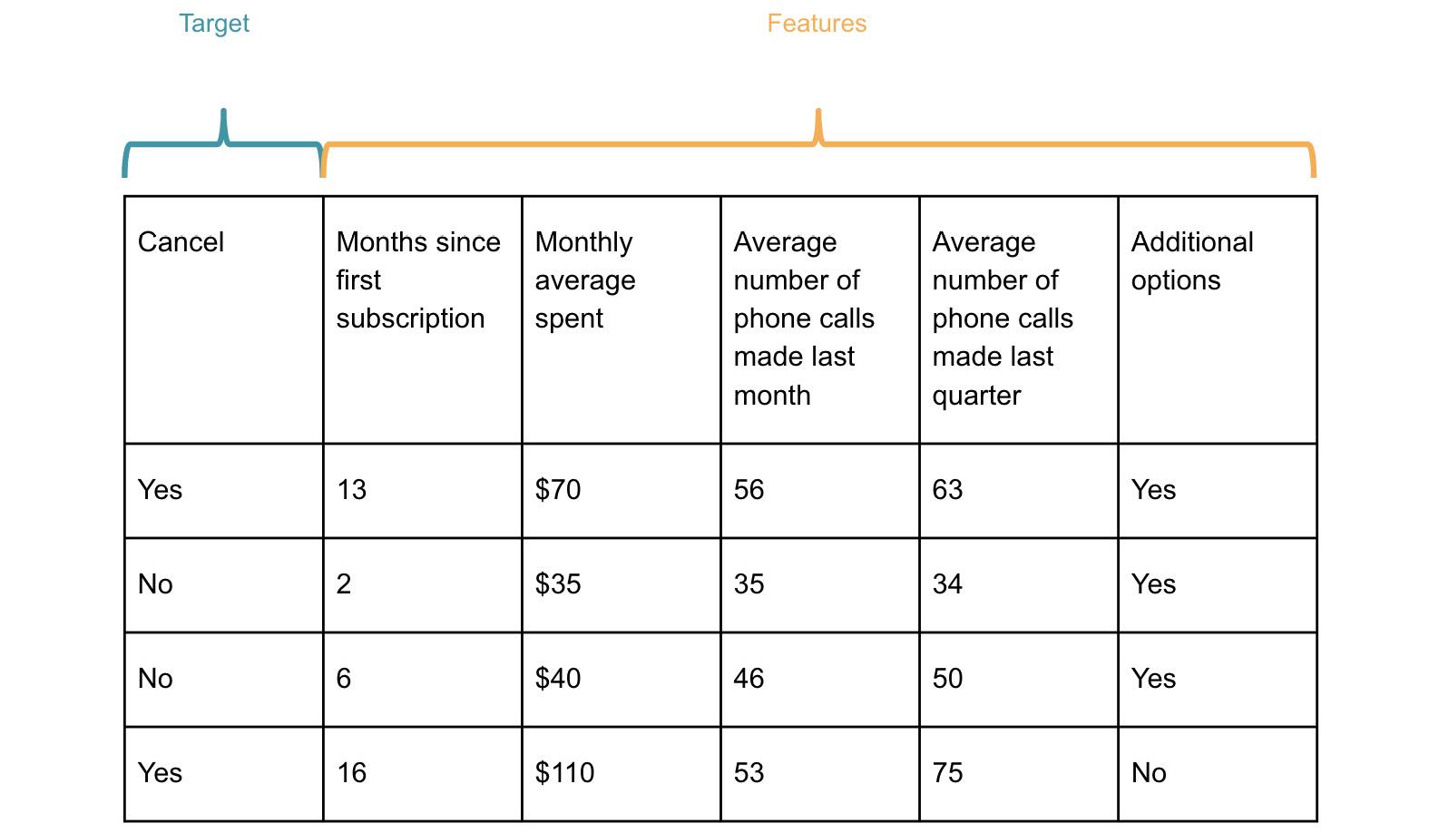 Figure 1.1: Example of customer churn dataset