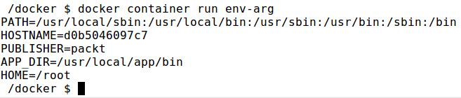 Figure 2.6: Running the env-arg Docker container