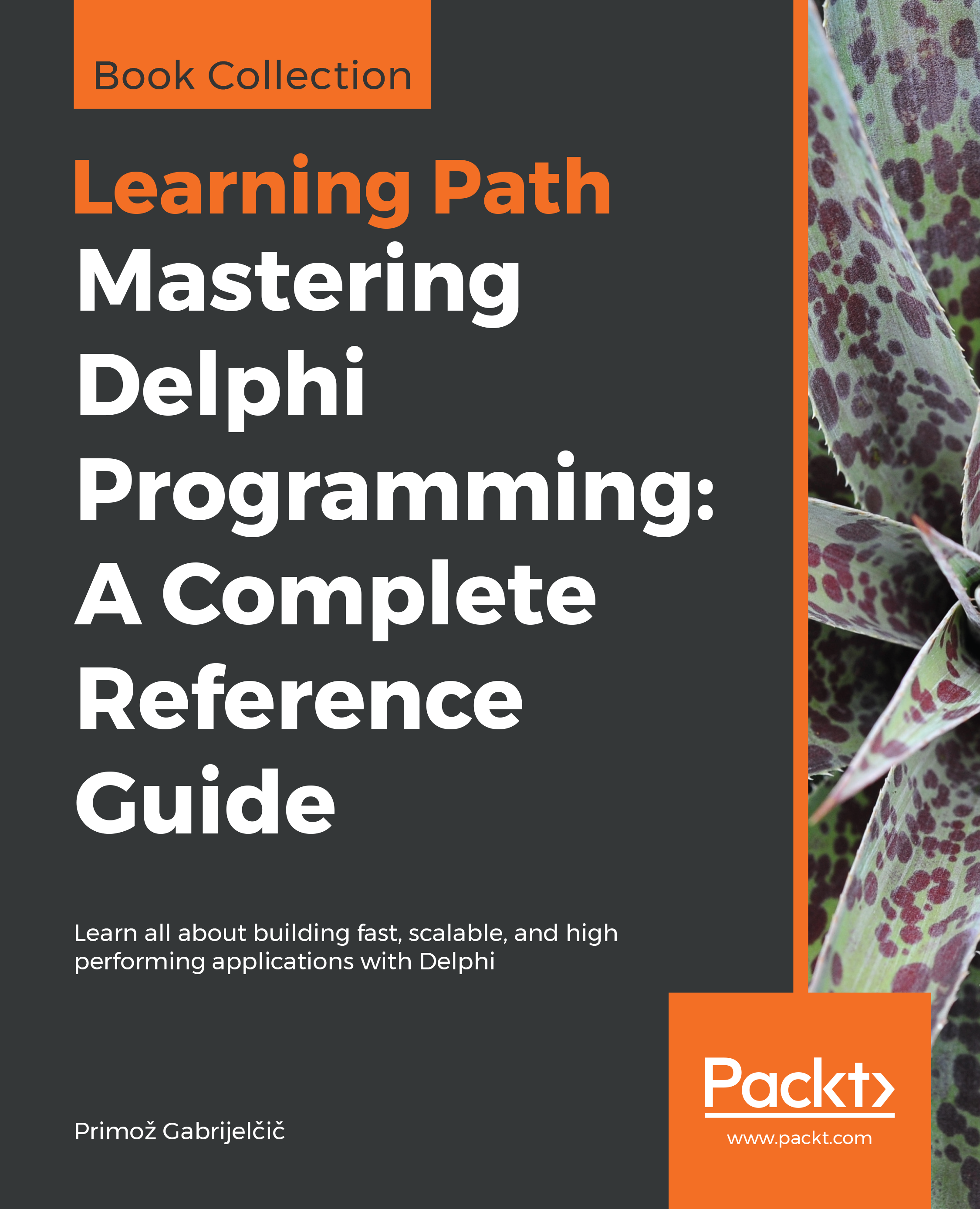 Mastering Delphi Programming: A Complete Reference Guide