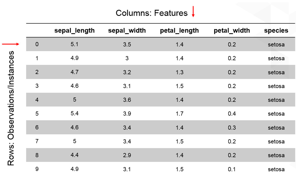 Figure 1.2: A table showing the first 10 instances of the iris dataset