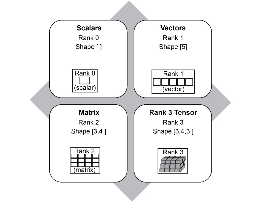 Figure 1.11: Examples of Tensor rank and shape