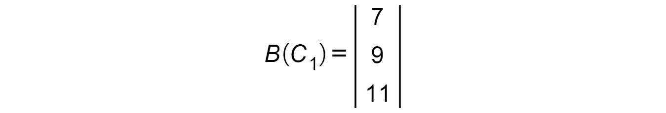 Figure 1.17: Matrix B(C1)