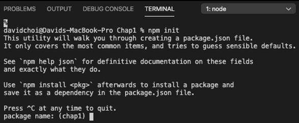 Figure 1.1 – npm init screen