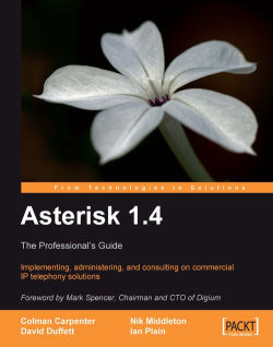 Asterisk 1.4 - The Professional's Guide