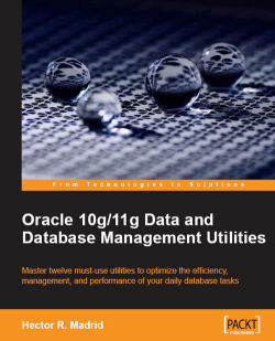 Oracle Wallet Manager - Oracle 10g/11g Data and Database