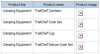 Relative path for images - IBM Cognos 8 Report Studio Cookbook