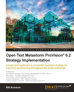 Open Text Metastorm ProVision 6.2 Strategy Implementation