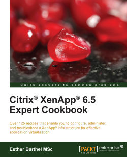 Finding your Citrix License Server version - Citrix XenApp 6 5