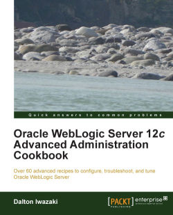 Updating the Oracle JDBC driver - Oracle WebLogic Server 12c
