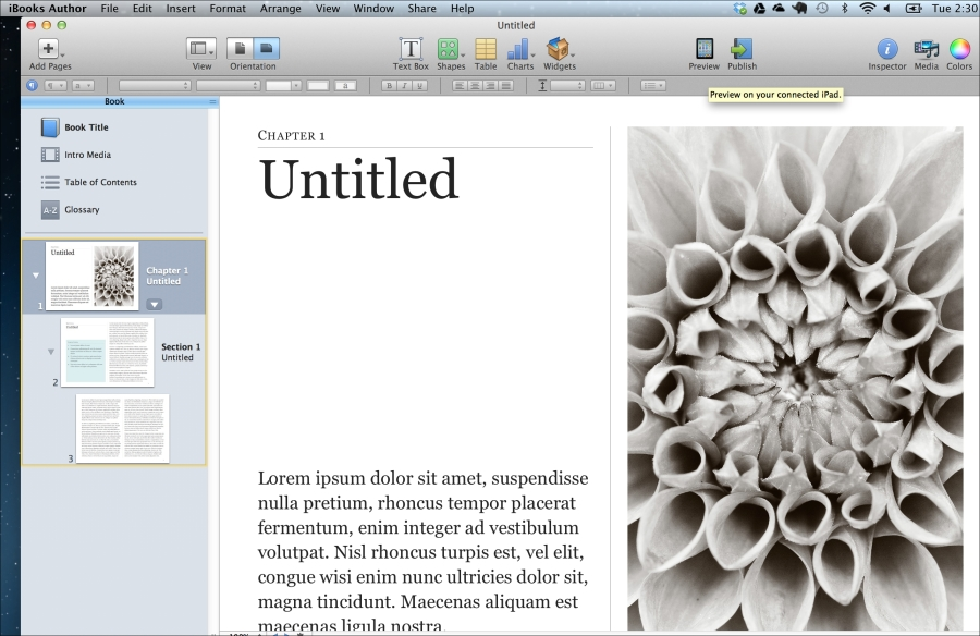 Exploring iBooks Author templates (Should know) - Instant
