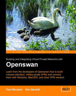 SSL VPN : Understanding, evaluating and planning secure, web