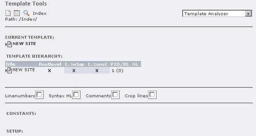 The Template Analyzer - Mastering TypoScript: TYPO3 Website